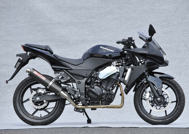 NINJA250R SUS2-1 UP-TYPE